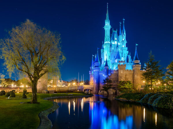 cinderella-castle-blue-zoom-wallpaper
