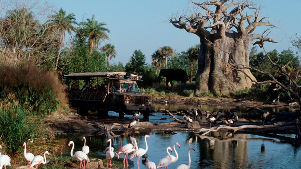 kilimanjaro-safaris-Animal-kingdom